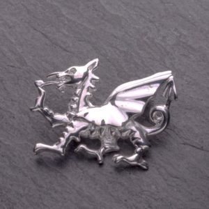 Dragon Brooches